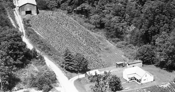 Vintage Aerial photo from 1982 in Lawrence County, KY