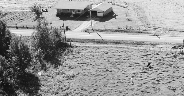 Vintage Aerial photo from 1968 in Dunn County, WI