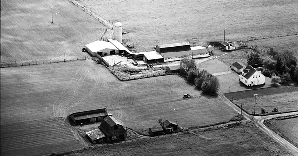 Vintage Aerial photo from 1968 in Whatcom County, WA