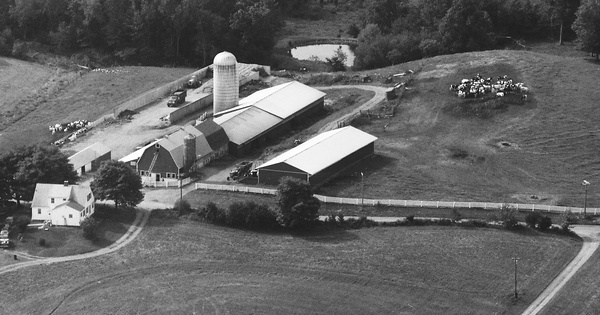 Vintage Aerial photo from 1986 in New Haven County, CT
