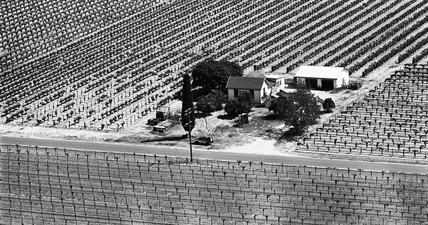 Vintage Aerial photo from 1965 in Fresno County, CA