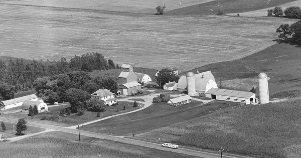 Vintage Aerial photo from 1981 in Douglas County, MN