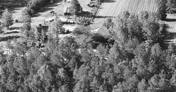 Vintage Aerial photo from 1985 in Cleveland County, AR