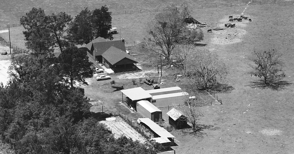 Vintage Aerial photo from 1983 in Coffee County, GA