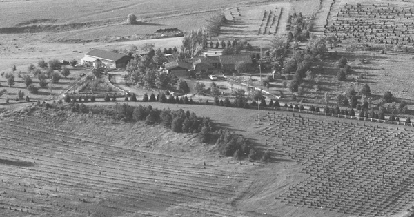 Vintage Aerial photo from 1981 in Nemaha County, KS