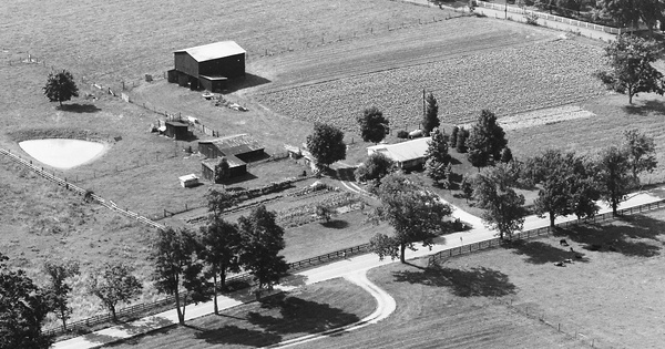 Vintage Aerial photo from 1986 in Fayette County, KY